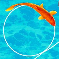 Koi Fish New 3D Game 2019