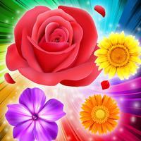 Blossom Blitz