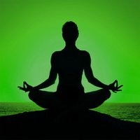Yoga Studio Free