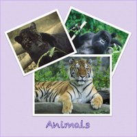 Animal picture book with sounds for kids