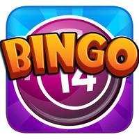Bingo Mania for Fun