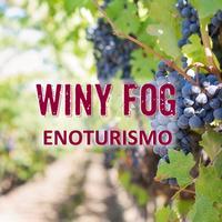 Enoturismo Winy Fog