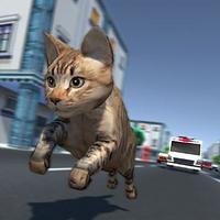 Kitty Cat Rush 3D Game