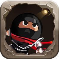 Heroic Ninja