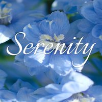 Serenity - Explore Life Within