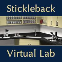 Stickleback Evolution Virtual Lab