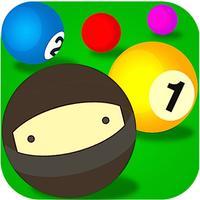Pool Ninja - 8 ball billiards