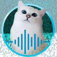 Cat Translator Simulator