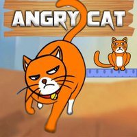 Hello Angry Cat