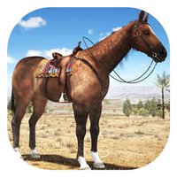 Horse Simulator 3D Game 2017