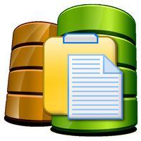 iDocument Flash Drive Lite