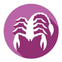 Scorpio Horoscope - Daily Zodiac, Astrology, Love