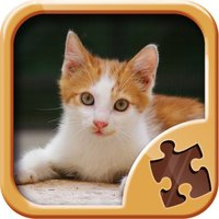 Cute Kitty Jigsaw Puzzle Games - Kitten Puzzles