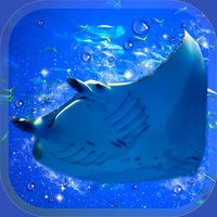 Aquarium Manta Simulation Game