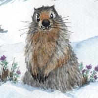 冰河鼠的毛皮:日本文學名著(中文朗讀版)