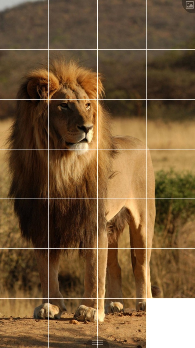 Puzzle Maker App for iPhone - Free Download Puzzle Maker for