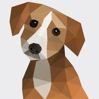 Human to dog translator - Understand your pet!