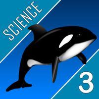Science Quest  - Third Grade Quiz