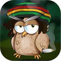 Rasta Bird Saga