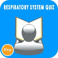Respiratory System Questions Pro