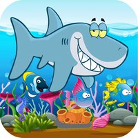 catch charm fish adventure