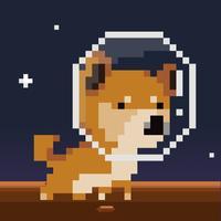 Puppy Moon
