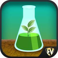 Botany & Plants Dictionary