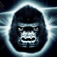 Sapiens The Ape