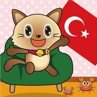 Fisher Cat Turkish