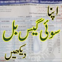 Check Sui Gas Bill