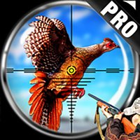 Pheasant Bird Hunting Pro