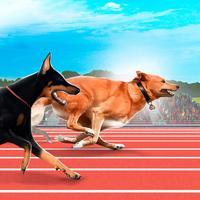 Greyhound Dog Racing Tournament