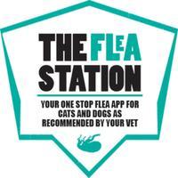 The Flea Station