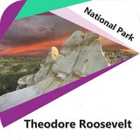 Theodore Roosevelt - N.Park