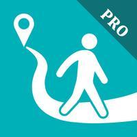 Pedometer Step Counter PRO