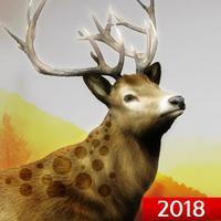 Hunting Challenge 2018