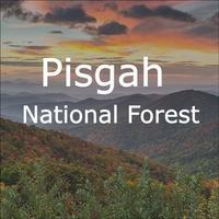 Explore Pisgah App - Interactive Guide