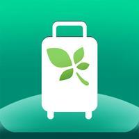 Mint T Bag (Travel packing list)