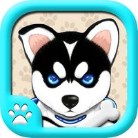 Naughty Husky Free-A puzzle sport game