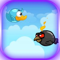 Blue Duck Journey