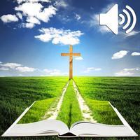 Hörbuch-Bibel