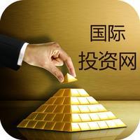 中国国际投资网