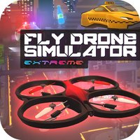 Fly Drone Simulator