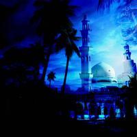 Islam Terimleri