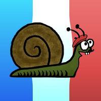 Les Conjugaisons Françaises: The Basics