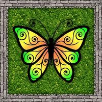 Butterfly Catchers
