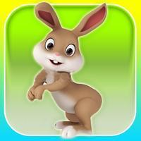Rabbit Rush 3D - Cool Running Games