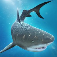 Shark Escape . Hungry Attack Dash Fever Game