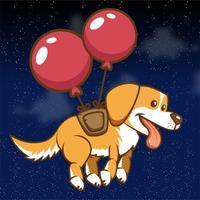 Flying Golden Dog