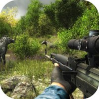 Animal Safari Hunter: Sniper S